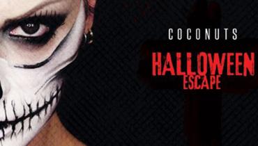 Halloween 2016 @ discoteca Coconuts