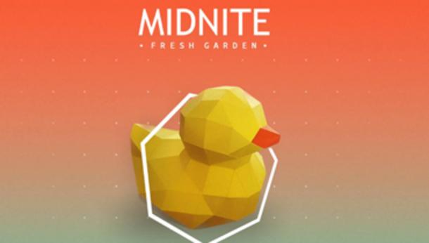 Midnite Fresh Garden • ORIGAMI