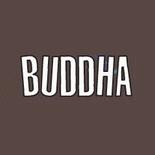 Bcd7a8967b539260959cedf83a11cd79 buddhaorzinuovilivemusic